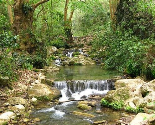 Cascada El Chuvejé