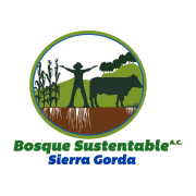 logo bosque sustentable