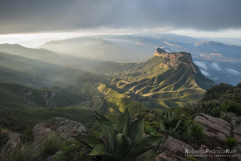 Mirador Cuatro Palos - Sierra Gorda Ecotours | Turismo Consciente
